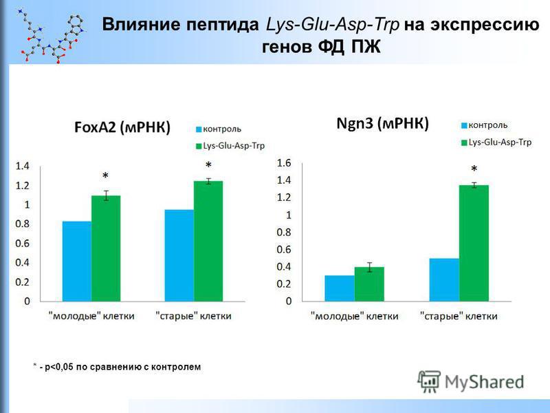 Влияние пептида Lys-Glu-Asp-Trp на экспрессию генов ФД ПЖ * - р