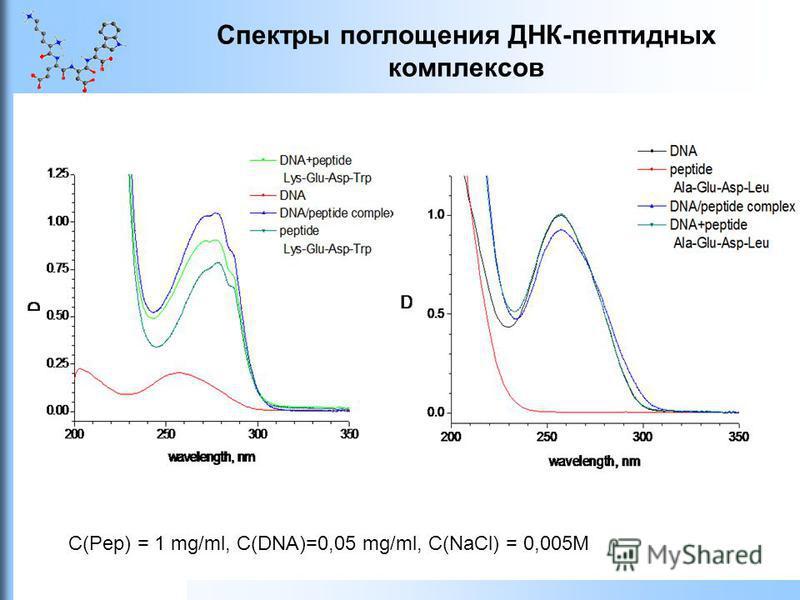 Спектры поглощения ДНК-пептидных комплексов C(Pep) = 1 mg/ml, C(DNA)=0,05 mg/ml, С(NaCl) = 0,005M