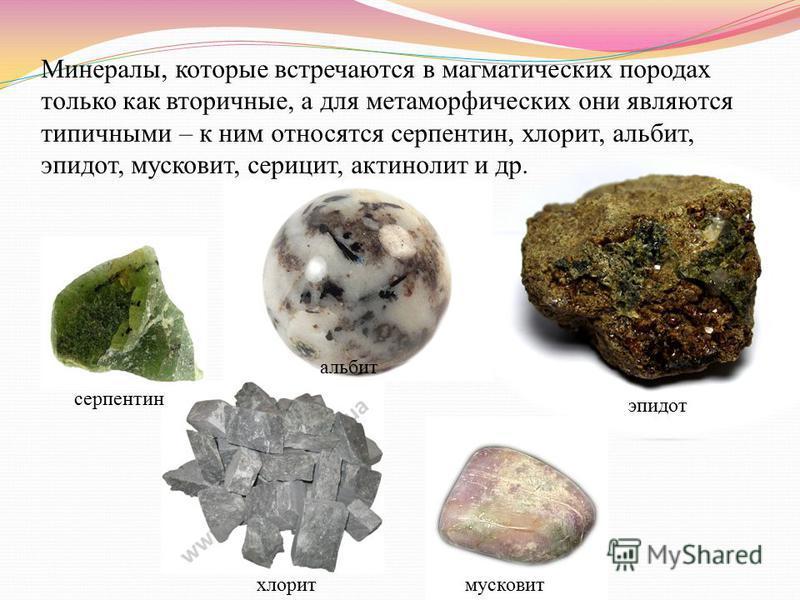 Минералы, которые встречаются в магматических породах только как вторичные, а для метаморфических они являются типичными – к ним относятся серпентин, хлорит, альбит, эпидот, мусковит, серицит, актинолит и др. хлорит серпентин альбит эпидот мусковит