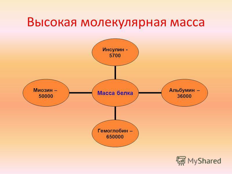 Высокая молекулярная масса Масса белка Инсулин - 5700 Альбумин – 36000 Гемоглобин – 650000 Миозин – 50000