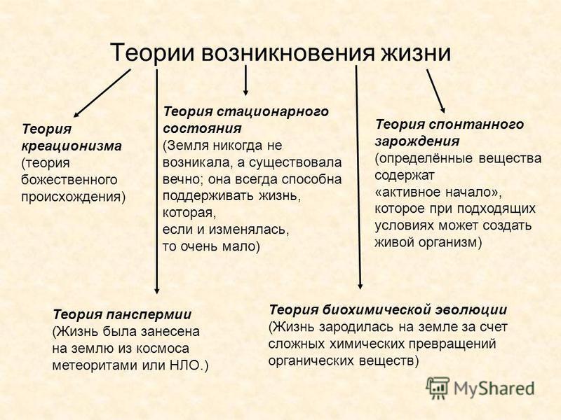 Теории возникновения жизни Теория креационизма (теория божественного происхождения) Теория стационарного состояния (Земля никогда не возникала, а существовала вечно; она всегда способна поддерживать жизнь, которая, если и изменялась, то очень мало) Т