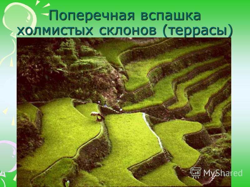 Поперечная вспашка холмистых склонов (террасы)