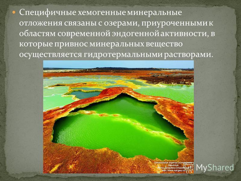 Специфичные хемогенные минеральные отложения связаны с озерами, приуроченными к областям современной эндогенной активности, в которые привнес минеральных вещество осуществляется гидротермальными растворами.