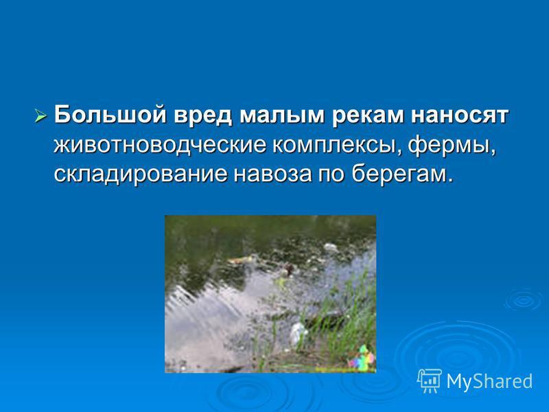Большой вред малым рекам наносят животноводческие комплексы, фермы, складирование навоза по берегам. Большой вред малым рекам наносят животноводческие комплексы, фермы, складирование навоза по берегам.