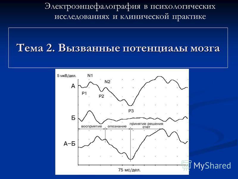 Тема 2. Вызванные потенциалы мозга Электроэнцефалография в психологических исследованиях и клинической практике