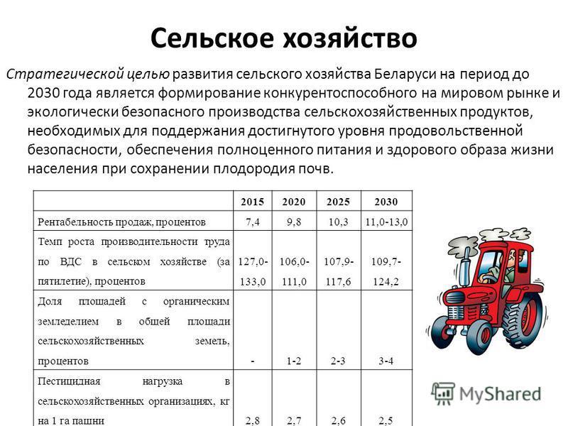 Сельское хозяйство Стратегической целью развития сельского хозяйства Беларуси на период до 2030 года является формирование конкурентоспособного на мировом рынке и экологически безопасного производства сельскохозяйственных продуктов, необходимых для п