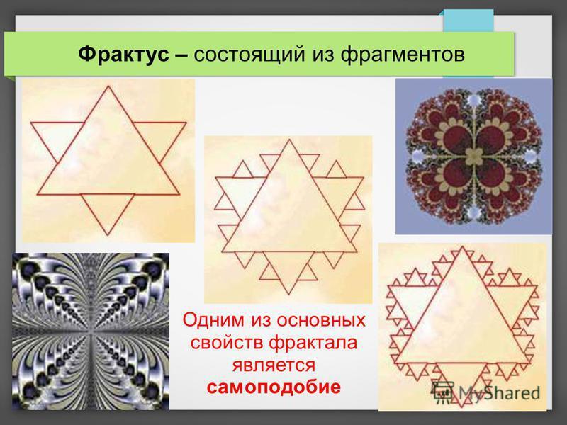 Одним из основных свойств фрактала является самоподобие Фрактус – состоящий из фрагментов