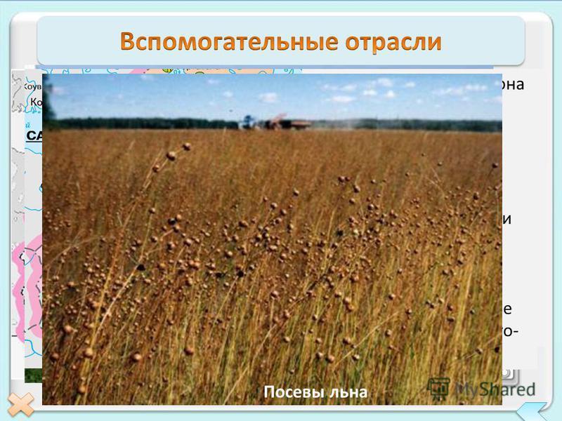 Топливно- энергетический комплекс Агропромышленный комплекс ГЭС АЭС ТЭС Ленинградская АЭС ТЭК района ориентируется на привозное топливо. Район - крупный потребитель электроэнергии. Ее вырабатывают мощные ТЭС, которые размещены в г. Санкт- Петербурге