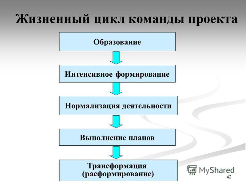 42 Жизненный цикл команды проекта Образование Интенсивное формирование Нормализация деятельности Трансформация (расформирование) Выполнение планов