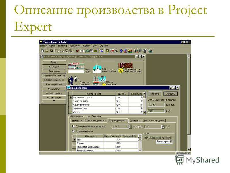 Описание производства в Project Expert