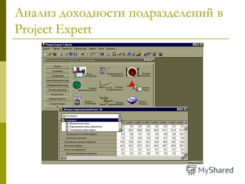 Анализ доходности подразделений в Project Expert