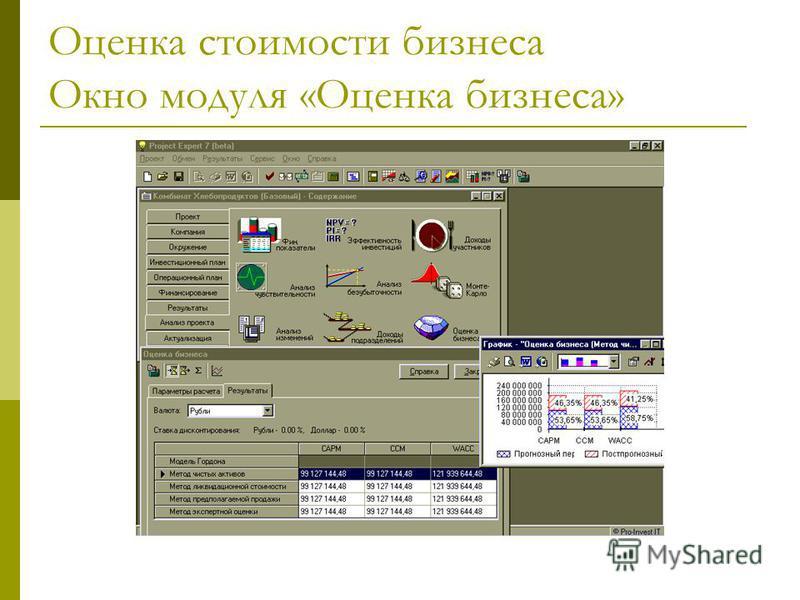 Оценка стоимости бизнеса Окно модуля «Оценка бизнеса»