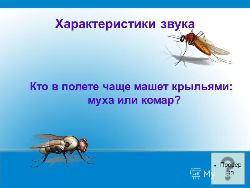 Характеристики звука Кто в полете чаще машет крыльями: муха или комар? Провер ка