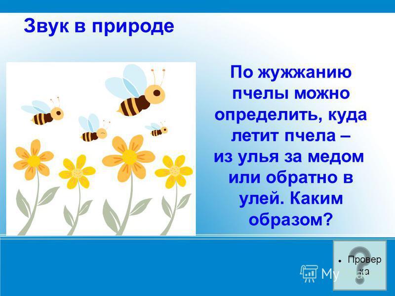 Звук в природе По жужжанию пчелы можно определить, куда летит пчела – из улья за медом или обратно в улей. Каким образом? Провер ка