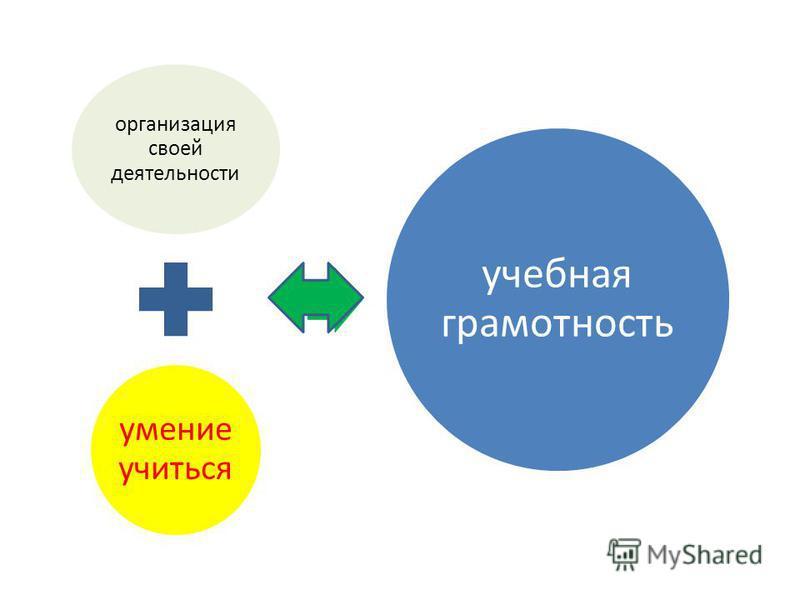 организация своей деятельности умение учиться учебная грамотность