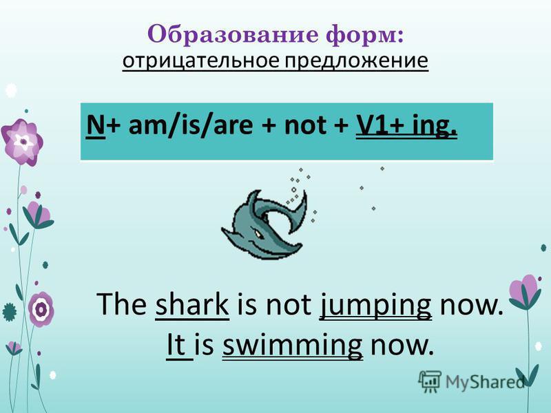 Образование форм: отрицательное предложение N+ am/is/are + not + V1+ ing. The shark is not jumping now. It is swimming now.
