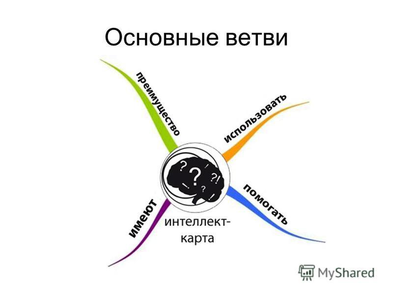 Основные ветви