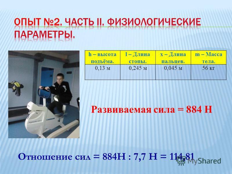 h – высота подъёма. l – Длина стопы. x – Длина пальцев. m – Масса тела. 0,13 м 0,245 м 0,045 м 56 кг Развиваемая сила = 884 Н Отношение сил = 884Н : 7,7 Н = 114,81