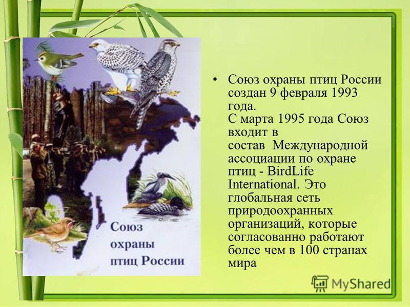 Союз охраны птиц России создан 9 февраля 1993 года. С марта 1995 года Союз входит в состав Международной ассоциации по охране птиц - BirdLife International. Это глобальная сеть природоохранных организаций, которые согласованно работают более чем в 10