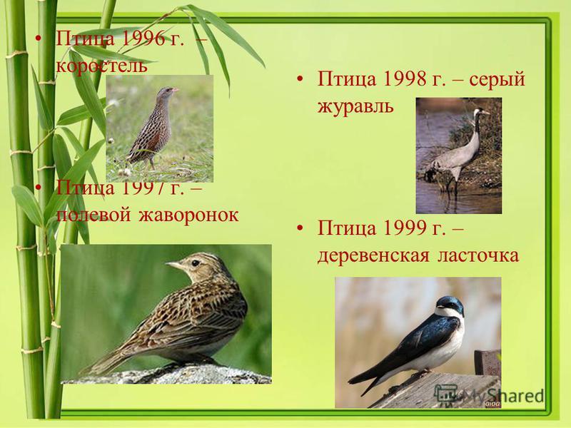 Птица 1996 г. – коростель Птица 1997 г. – полевой жаворонок Птица 1998 г. – серый журавль Птица 1999 г. – деревенская ласточка