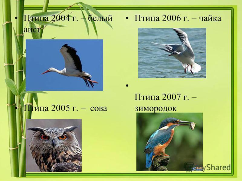 Птица 2004 г. – белый аист Птица 2005 г. – сова Птица 2006 г. – чайка Птица 2007 г. – зимородок
