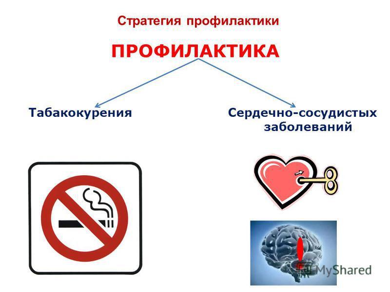 Стратегия профилактики ПРОФИЛАКТИКА Табакокурения Сердечно-сосудистых заболеваний