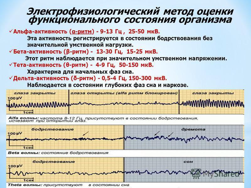 Альфа-активность (α-ритм) - 9-13 Гц, 25-50 мкВ. Эта активность регистрируется в состоянии бодрствования без значительной умственной нагрузки. Бета-активность (β-ритм) - 13-30 Гц, 15-25 мкВ. Этот ритм наблюдается при значительном умственном напряжении