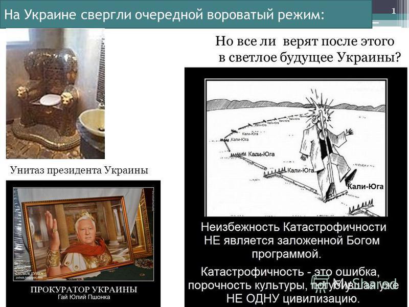 На Украине свергли очередной вороватый режим: 1 Но все ли верят после этого в светлое будущее Украины? Унитаз президента Украины