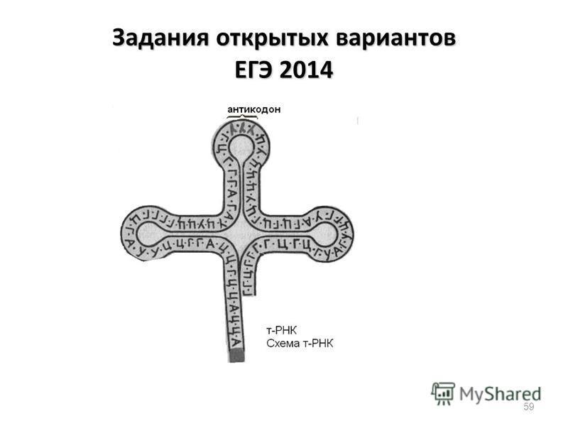 59 Задания открытых вариантов ЕГЭ 2014