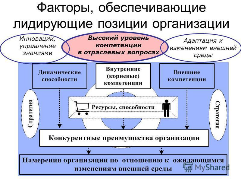 Факторы, обеспечивающие лидирующие позиции организации Высокий уровень компетенции в отраслевых вопросах Инновации, управление знаниями Адаптация к изменениям внешней среды