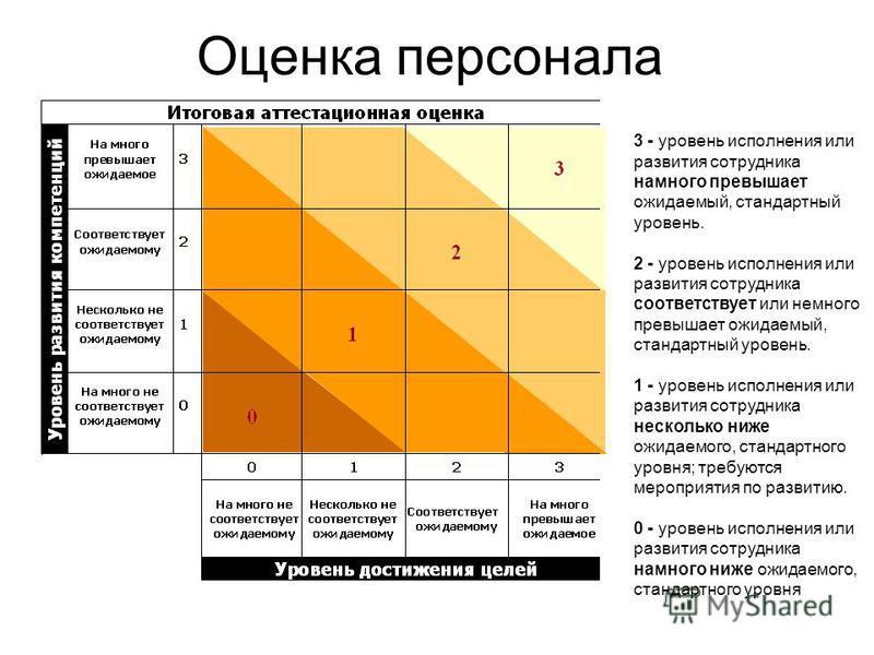 Оценка персонала 3 - уровень исполнения или развития сотрудника намного превышает ожидаемый, стандартный уровень. 2 - уровень исполнения или развития сотрудника соответствует или немного превышает ожидаемый, стандартный уровень. 1 - уровень исполнени