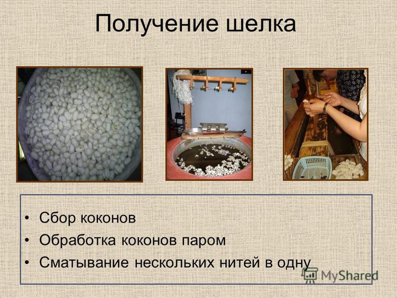 Получение шелка Сбор коконов Обработка коконов паром Сматывание нескольких нитей в одну