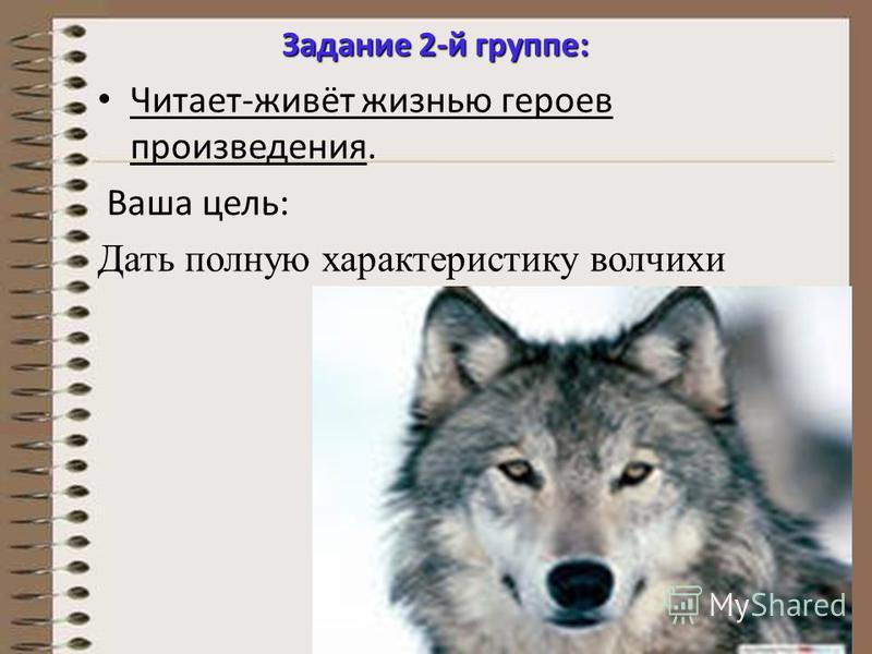 Задание 2-й группе: Читает-живёт жизнью героев произведения. Ваша цель: Дать полную характеристику волчихи