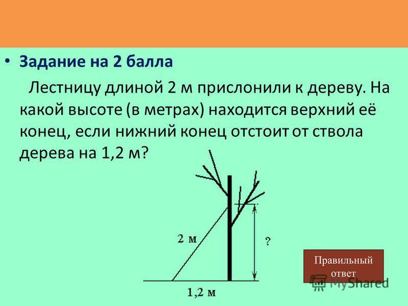 Задание на 2 балла Лестницу длиной 2 м прислонили к дереву. На какой высоте (в метрах) находится верхний её конец, если нижний конец отстоит от ствола дерева на 1,2 м?