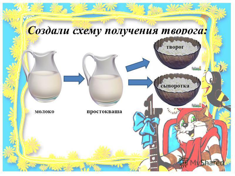 Создали схему получения творога: молоко простокваша творог сыворотка