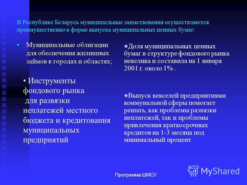 В Республике Беларусь муниципальные заимствования осуществляются преимущественно в форме выпуска муниципальных ценных бумаг: Муниципальные облигации для обеспечения жилищных займов в городах и областях;Муниципальные облигации для обеспечения жилищных