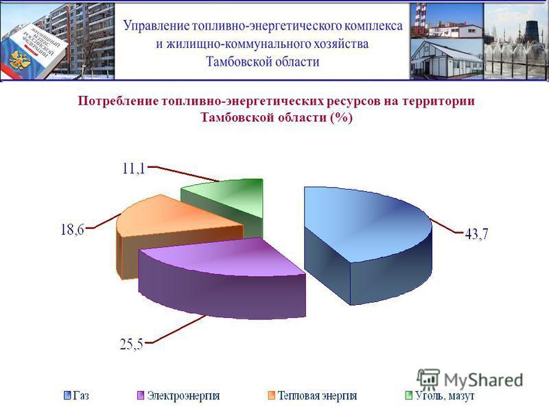 Потребление топливно-энергетических ресурсов на территории Тамбовской области (%)