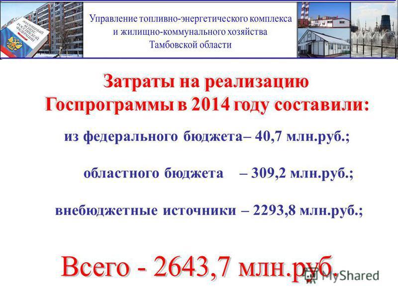 из федерального бюджета– 40,7 млн.руб.; областного бюджета– 309,2 млн.руб.; внебюджетные источники – 2293,8 млн.руб.;
