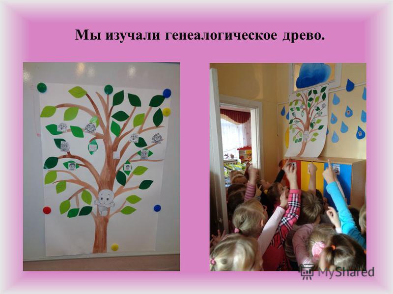 Мы изучали генеалогическое древо.