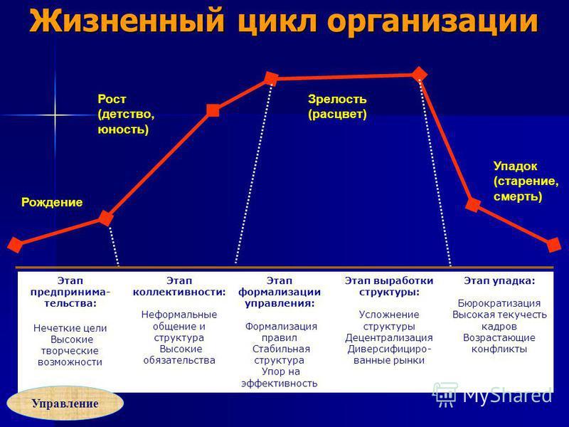 Жизненный цикл организации Этап предпринимательства: Нечеткие цели Высокие творческие возможности Этап коллективности: Неформальные общение и структура Высокие обязательства Этап формализации управления: Формализация правил Стабильная структура Упор