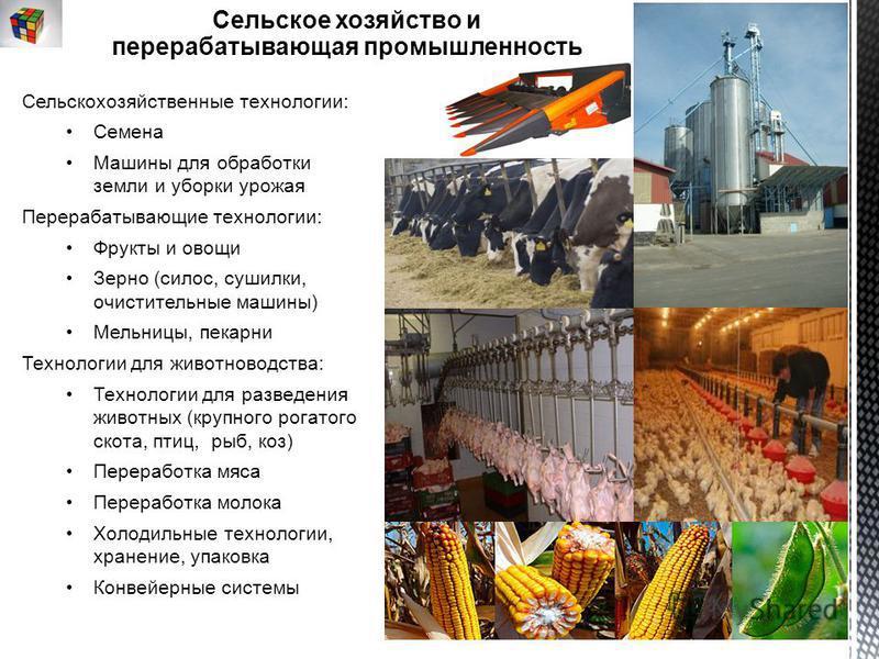 Сельскохозяйственные технологии: Семена Машины для обработки земли и уборки урожая Перерабатывающие технологии: Фрукты и овощи Зерно (силос, сушилки, очистительные машины) Мельницы, пекарни Технологии для животноводства: Технологии для разведения жив