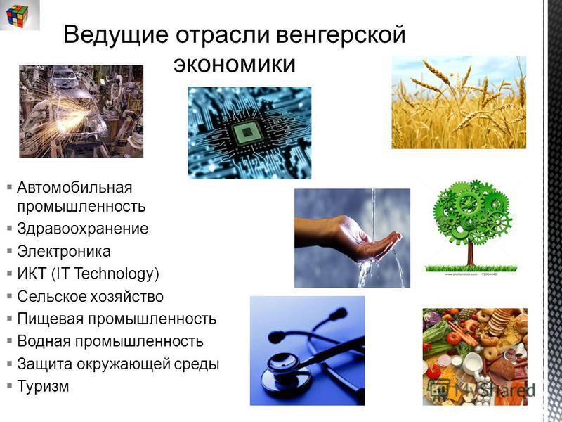 Автомобильная промышленность Здравоохранение Электроника ИКТ (IT Technology) Сельское хозяйство Пищевая промышленность Водная промышленность Защита окружающей среды Туризм
