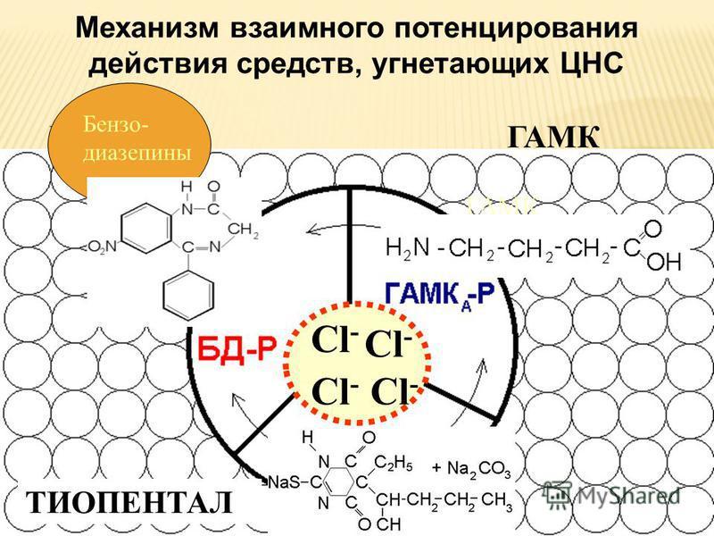 ГАМК ГАЛОТАН ГАМК ТИОПЕНТАЛ Сl-Сl- Сl-Сl- Сl-Сl- Сl-Сl- Механизм взаимного потенцирования действия средств, угнетающих ЦНС Бензо- диазепины