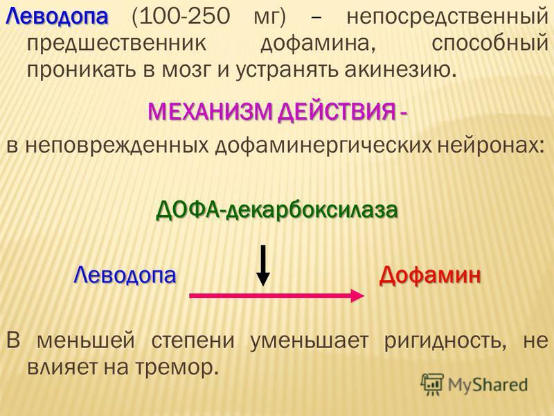 Леводопа Леводопа (100-250 мг) – непосредственный предшественник дофамина, способный проникать в мозг и устранять акинезию. МЕХАНИЗМ ДЕЙСТВИЯ - в неповрежденных дофаминергических нейронах:ДОФА-декарбоксилаза Леводопа Дофамин В меньшей степени уменьша