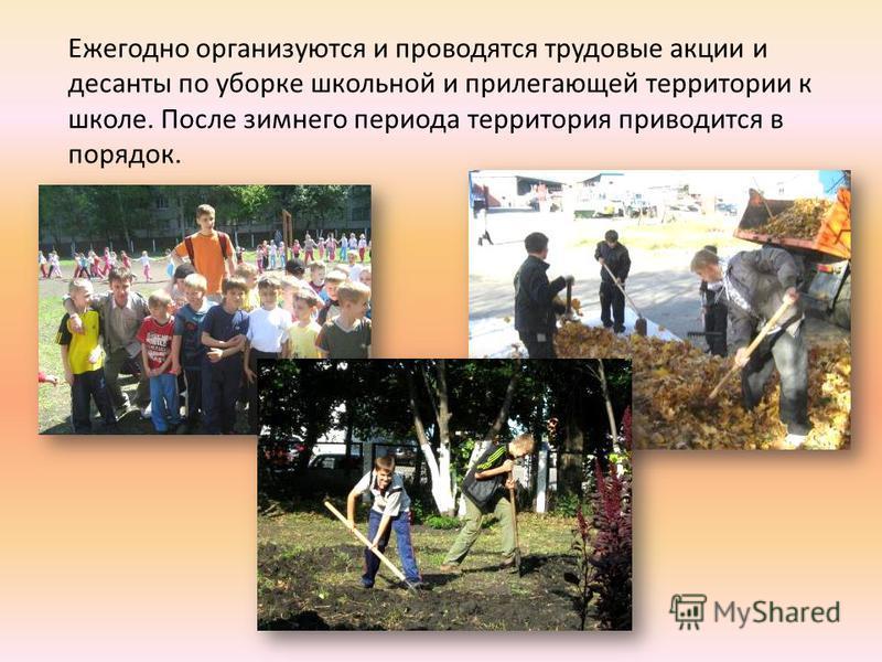 Ежегодно организуются и проводятся трудовые акции и десанты по уборке школьной и прилегающей территории к школе. После зимнего периода территория приводится в порядок.
