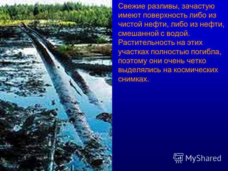 Свежие разливы, зачастую имеют поверхность либо из чистой нефти, либо из нефти, смешанной с водой. Растительность на этих участках полностью погибла, поэтому они очень четко выделялись на космических снимках.