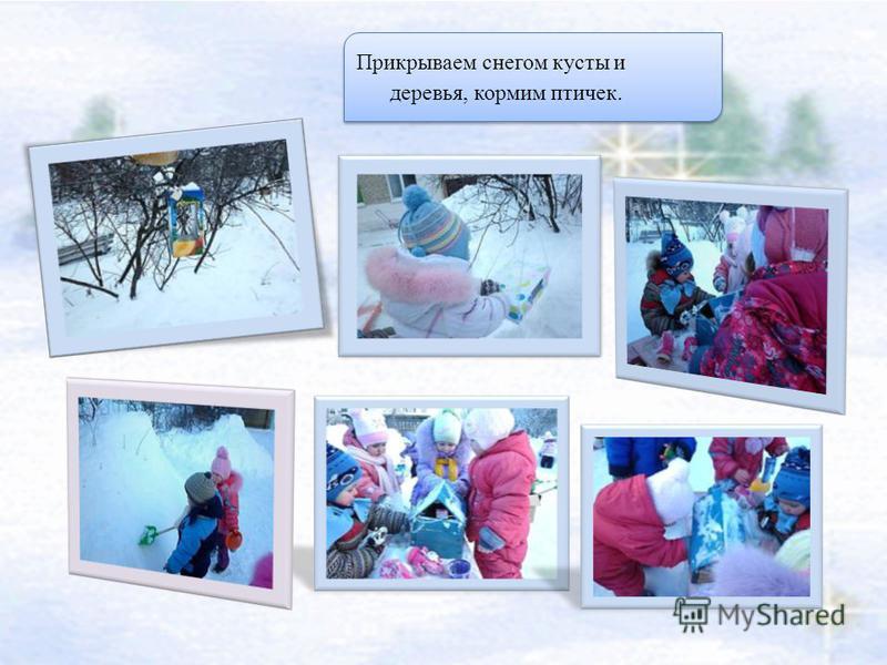 Прикрываем снегом кусты и деревья, кормим птичек.