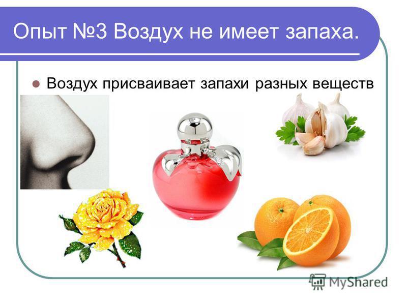 Опыт 3 Воздух не имеет запаха. Воздух присваивает запахи разных веществ