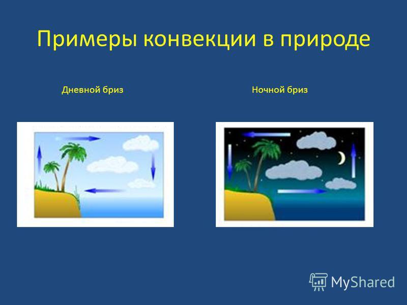 Примеры конвекции в природе Дневной бриз Ночной бриз