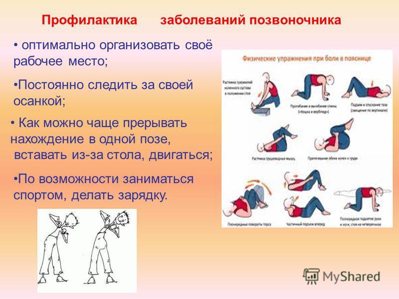 Профилактика заболеваний позвоночника оптимально организовать своё рабочее место; Постоянно следить за своей осанкой; Как можно чаще прерывать нахождение в одной позе, вставать из-за стола, двигаться; По возможности заниматься спортом, делать зарядку
